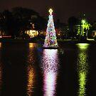 Tree at Colonial Lake, Charleston, SC, USA by James J. Ravenel, III