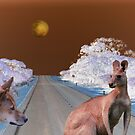 The Dingo & the Roo by robert murray