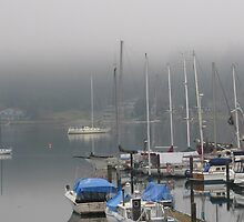 Longbranch marina, Washington state by Kathleen Hamilton