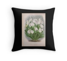 Iconagraphy of Orchids Iconographie des Orchidées Jean Jules Linden V4 1888 0118 Throw Pillow