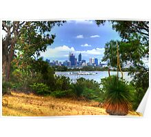Perth through the trees Poster