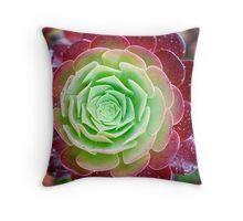 Cabbage Rose Succulent Throw Pillow