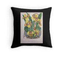 Iconagraphy of Orchids Iconographie des Orchidées Jean Jules Linden V4 1888 0042 Throw Pillow