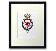 Coat of arms (family crest) for last-name or surname McAwley (Ireland) . Heraldry banner for your name. Framed Print