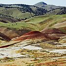 View No. 2 Painted Hills - John Day Fossil Beds National Monument, Grant County, OR by Rebel Kreklow