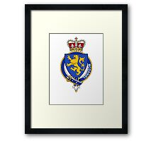 Coat of arms (family crest) for last-name or surname McDaniel (Ireland) . Heraldry banner for your name. Framed Print