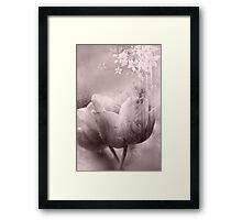 Fragility Framed Print