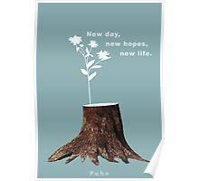 New life. Poster