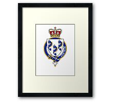 Coat of arms (family crest) for last-name or surname McElroy (Ireland) . Heraldry banner for your name. Framed Print