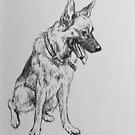 German Shepherd by Vanessa Zakas