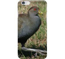 Ministry of Funny Walks (Tasmanian Native Hen) iPhone Case/Skin