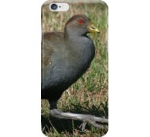 Ministry of Funny Walks (Tasmanian Native Hen) iPhone Case/Skin
