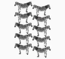 Lots of zebras by louise