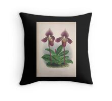 Iconagraphy of Orchids Iconographie des Orchidées Jean Jules Linden V4 1888 0018 Throw Pillow