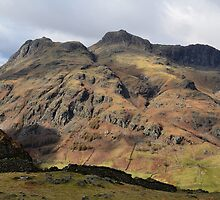 Langdale Pikes from Lingmoor Fell by Blagnys