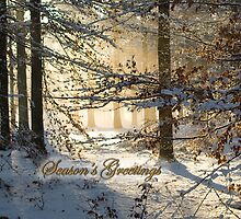 Filtering through - Seasons Greetings by steppeland-2