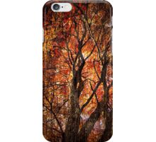 Autumn Aura iPhone Case/Skin