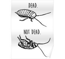 Dead. Not Dead. Roaches Poster