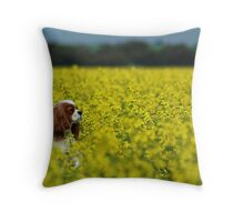 ~Joey In The Canola~ Throw Pillow