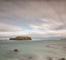 Sheep Island - Larrybane by Nigel R Bell