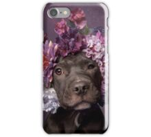 Flower Power, Dax iPhone Case/Skin