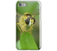 Head on Hoverfly iPhone Case/Skin