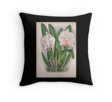 Iconagraphy of Orchids Iconographie des Orchidées Jean Jules Linden V4 1888 0106 Throw Pillow