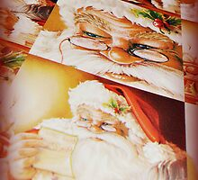 Santa Paper by A Different Eye Photography