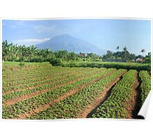 Gunung Arjuna, Malang Poster