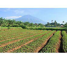 Gunung Arjuna, Malang Photographic Print