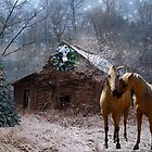 Sparkling Country Christmas-OLD barn by Sharksladie