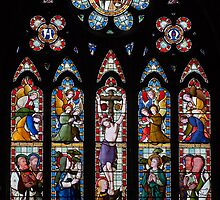 Stained Glass  by Geoff Carpenter