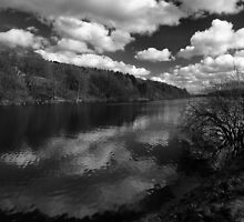 Damflask by Roger Butterfield