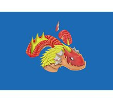 red water dragon  Photographic Print