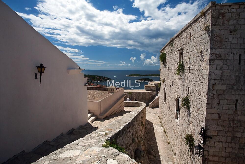 Overlooking Hvar - Excursion from MedILS by MedILS