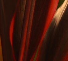 Sensual Solitude... Kauai Sensual Series by linaji