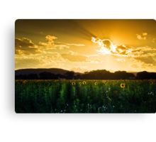Longmont Summer Skies 2 Canvas Print