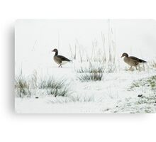 Into the white, wide world Canvas Print