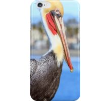 Brown Pelican on Oceanside Pier iPhone Case/Skin