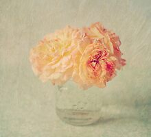 Textured Peach Roses  by Nicola  Pearson