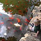 the koi pond by jashumbert