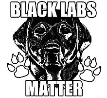 BLACK LABS MATTER 2 Photographic Print