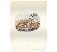 The Tale of Squirrel Nutkin Beatrix Potter 1903 0046 Egg in a Rush Basket for Old Brown Owl Poster