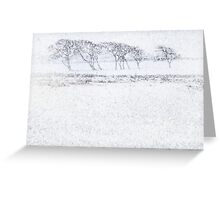 Snow drift Greeting Card