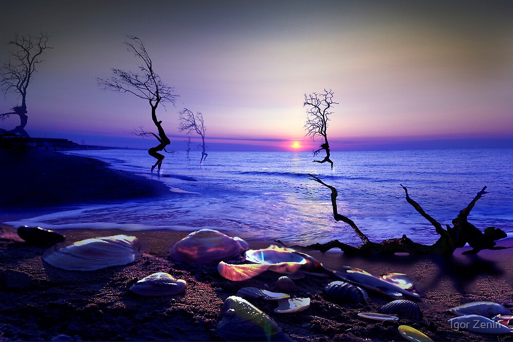 Sunset Run by Igor Zenin