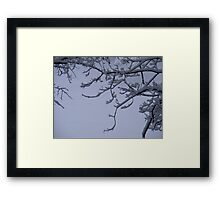 Snow Scrolls Framed Print