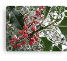 Icy Holly Berries Canvas Print