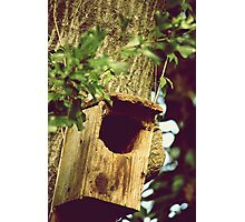 THE BIRDS CRIB Photographic Print