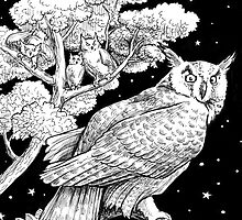 The Night Owl by Stephanie Smith