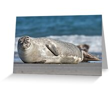 Adorable Common Seal Greeting Card
